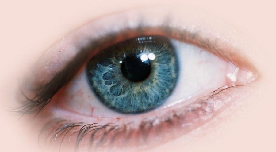 "Blepharoplasty: all in favour say ""eye"""