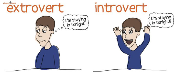 Redefined%3A+Introvert