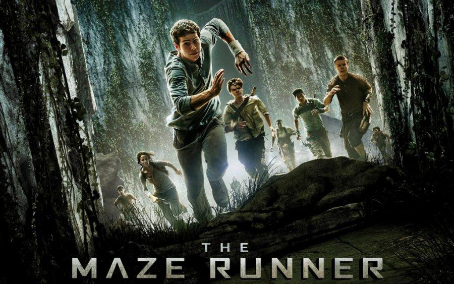 The Maze Runner wows in theaters
