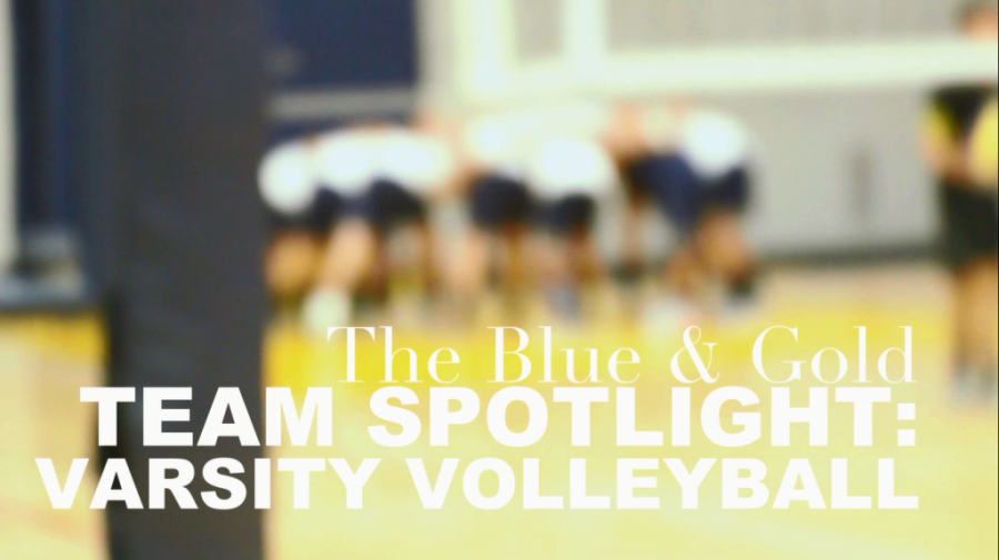 Team Spotlight: 2014 Volleyball