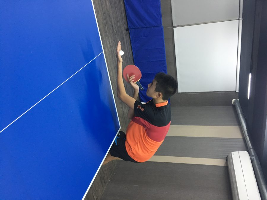 Guo+C.+%2810%29%3A+Table+Tennis