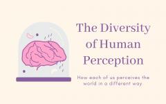 The Diversity of Human Perception