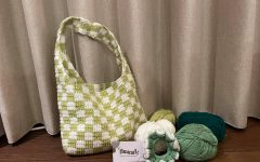 Twin business partners promote sustainable fashion through crochet shop Fuzzl