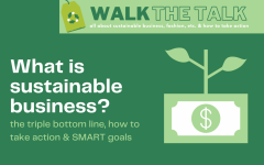 Sustainable business has experienced an uprise in the recent years, many brands have begun to employ sustainable business strategies and experienced positive benefits in the long run. [LAURA HSU/THE BLUE & GOLD]